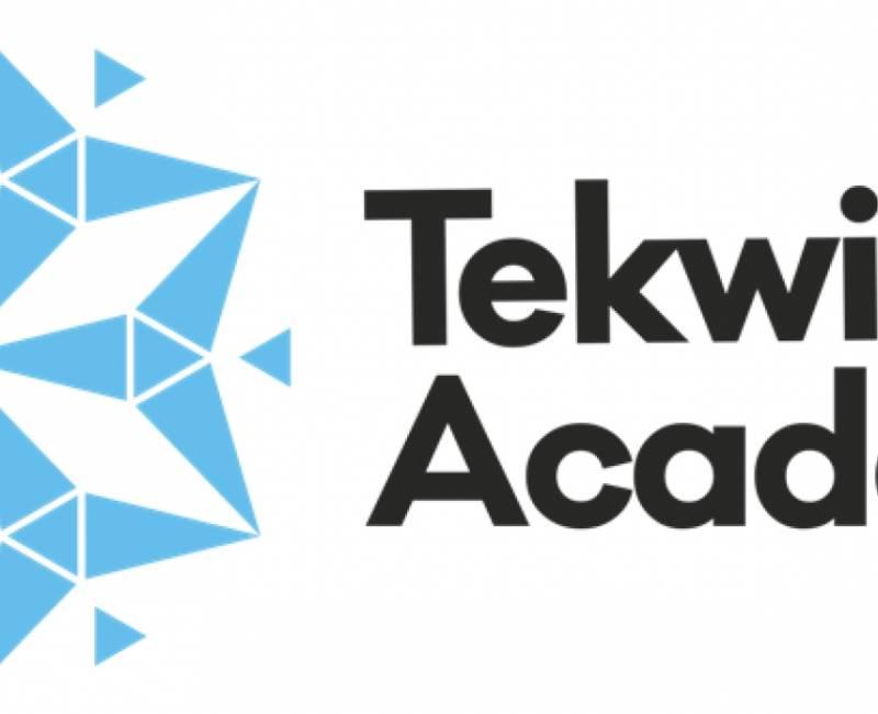 Tekwill Academy Kids запускает стипендиальные образовательные программы в  сфере IT для Гагаузии